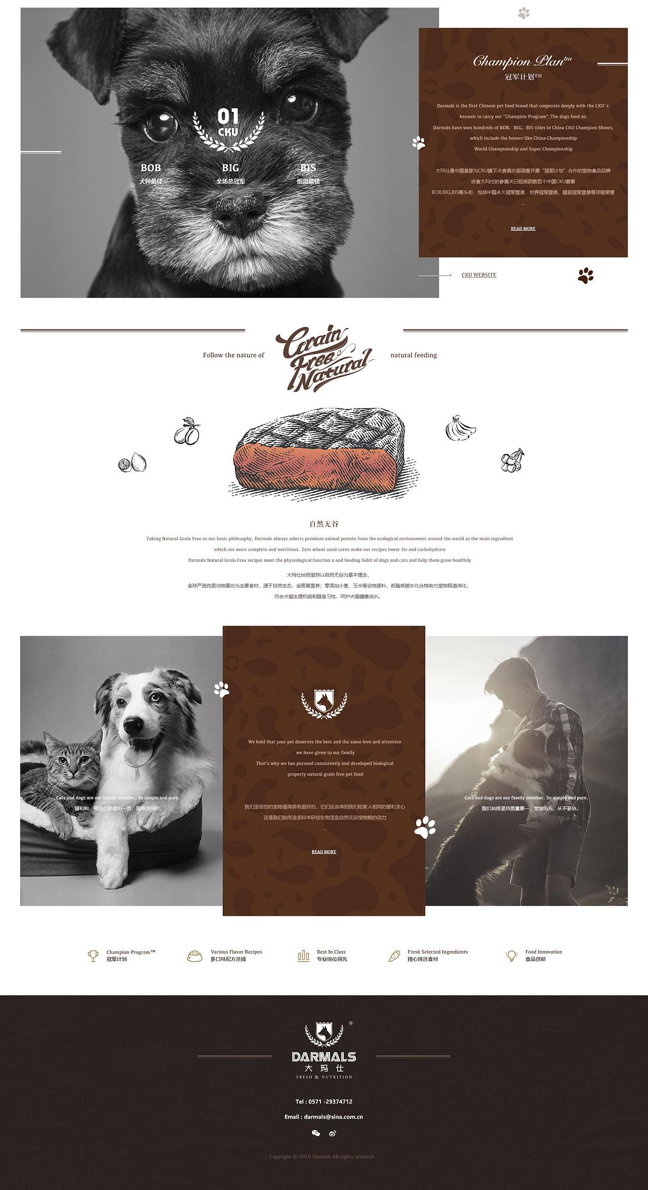 平度网站设计